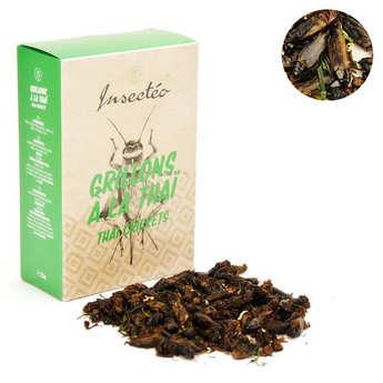 Insecteo - Crickets Thai Way