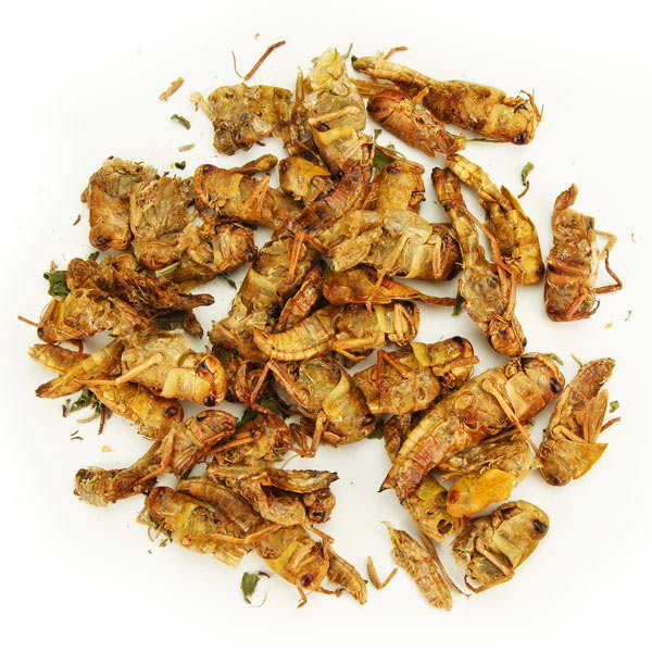 Thai Basil and Garlic Locusts Thai