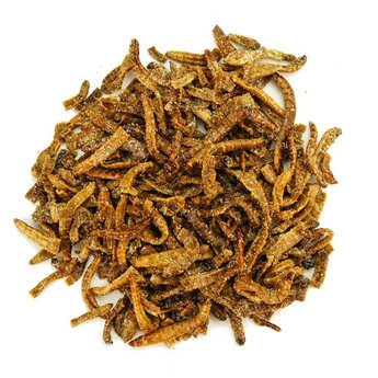 Insecteo - Vers géants moutarde et miel