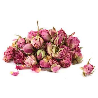 Quai Sud - Petits Boutons de roses entiers