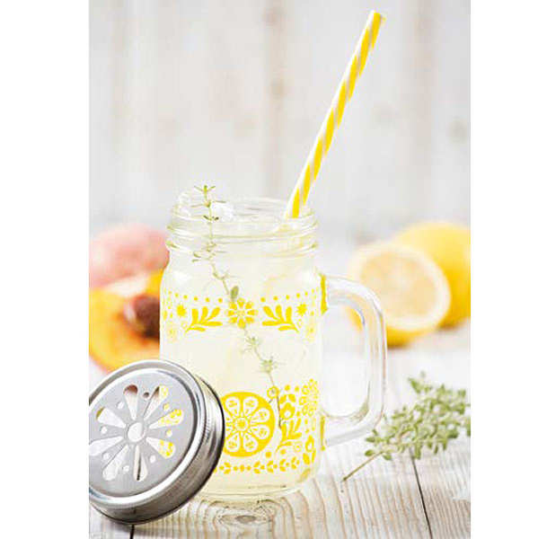 Kit limonade maison