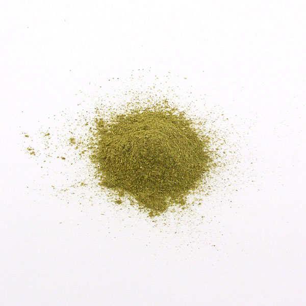Stevia en poudre verte