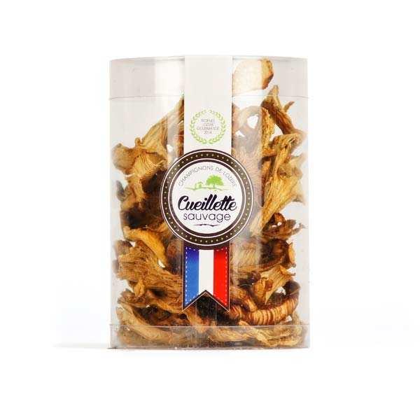 Dried Girolle Mushrooms