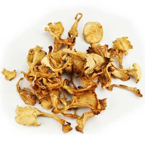 Champi Lozère - Dried Girolle Mushrooms