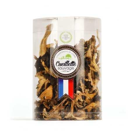 Champi Lozère - Chanterelles à tube séchées de Lozère