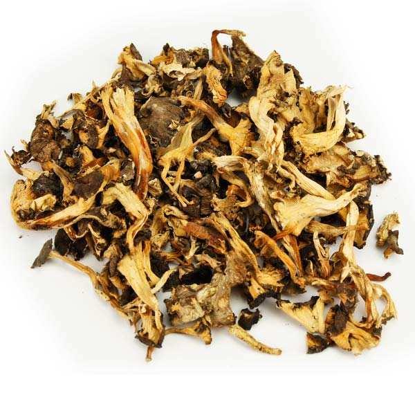 Dried Chanterelle Muchrooms