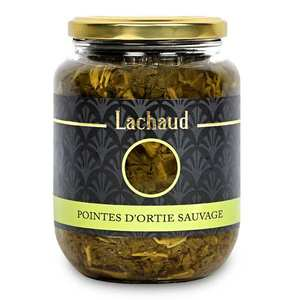 Lachaud - Wild Nettle Points from France