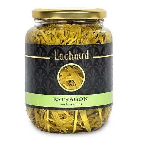 Lachaud - Estragon de France en branches