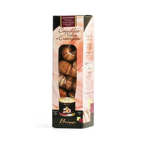 Bourgogne Escargots - Empty Shells and Burgundy Snails