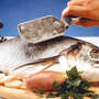 Westmark - Ecailleur à poissons Scalex