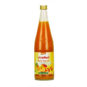 Voelkel GmbH - Jus multi nature aux fruits exotiques et carottes bio demeter