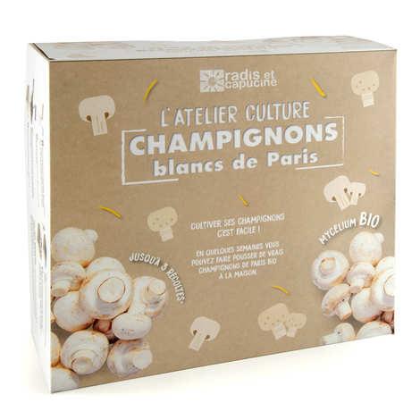 Radis et Capucine - Boite de culture : champignons de Paris bio
