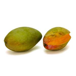 - Fresh Mango from Portugal