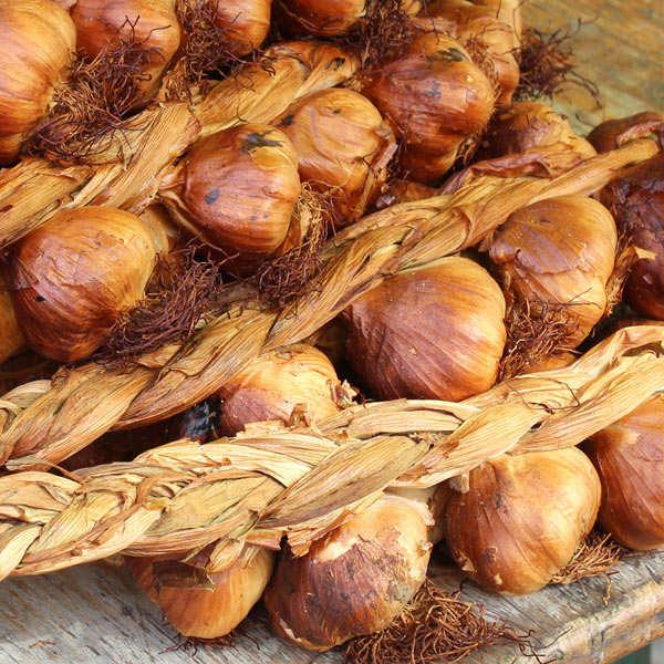 Smoked garlic from Arleux IGP