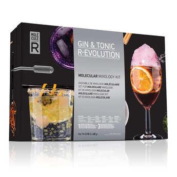 Saveurs MOLÉCULE-R - Kit de cocktail moléculaire Gin Tonic