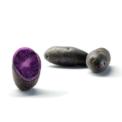 Bayard - Pommes de terre bleues Prunelle
