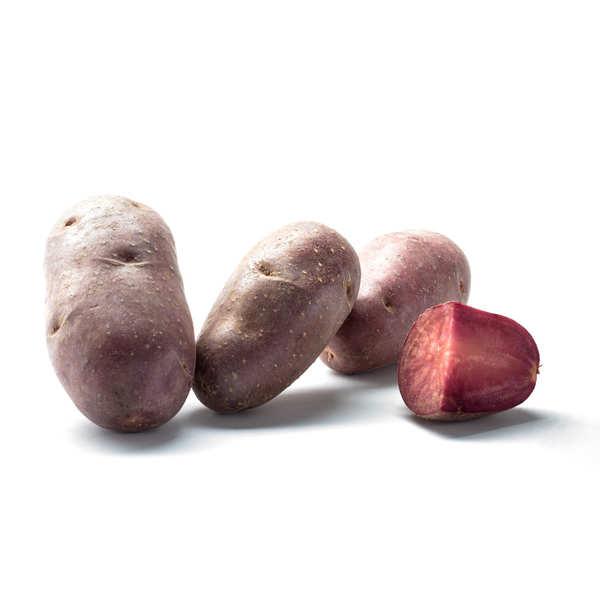 Pommes de terre Lily Rose