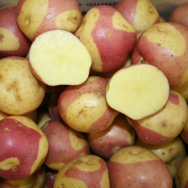 """Miss Blush"" Potatoes"