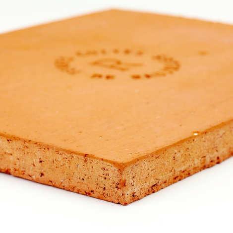 Terres Cuites de Raujolles - Pierre à pizza rectangulaire en terre cuite spéciale four ménager (40x30x2.5)