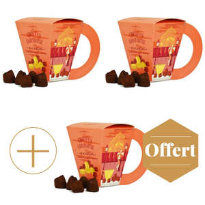 Chocolat Mathez - Chocolate Truffles with Macaroon Bites 2+1 for free
