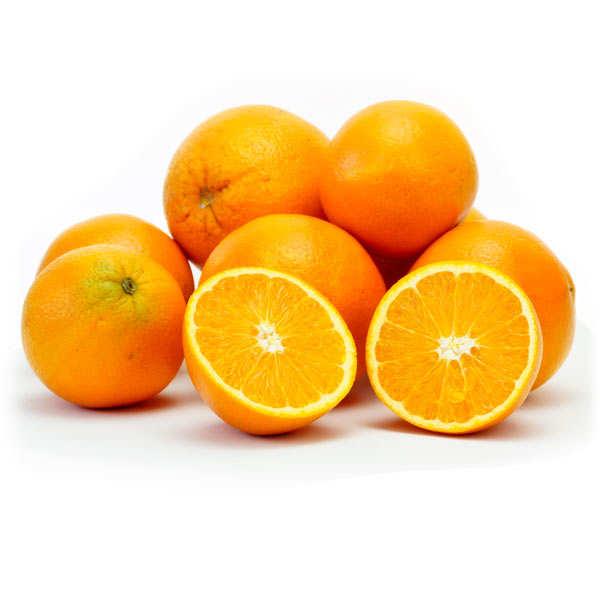 Oranges fraîches variété Navel Lane Late du Portugal