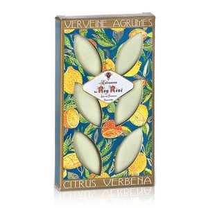 Le Roy René - French Calissons d'Aix - Decorated Case Verbena Citrus Fruits