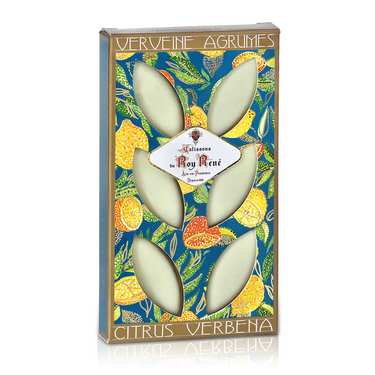 French Calissons d'Aix - Decorated Case Verbena Citrus Fruits