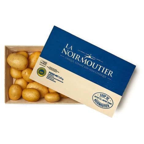 Coopérative agricole de Noirmoutier - Fresh Noirmoutier Island Potatoes - Medium