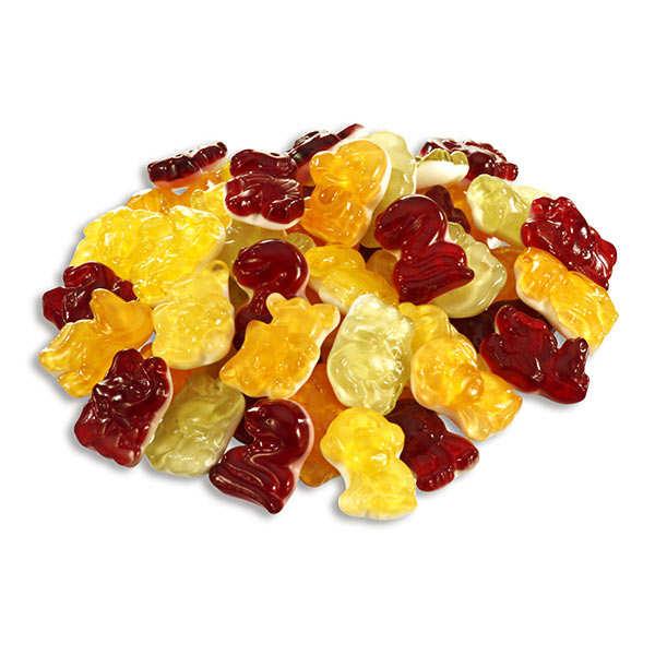 Bonbons animaux fruités bio sans lactose et sans gluten