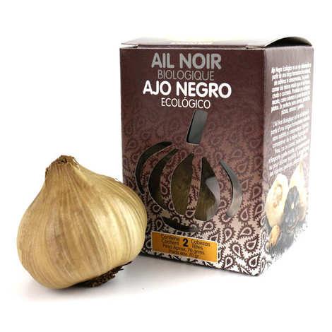Black Allium - Ail noir fermenté d'Espagne bio (2 têtes)