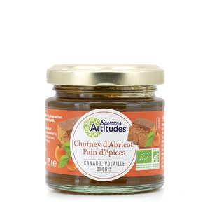 Saveurs Attitudes - Chutney abricot et pain d'épices bio