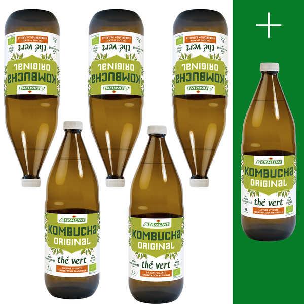 Kombucha, boisson lactofermentée bio - 5 + 1 offert