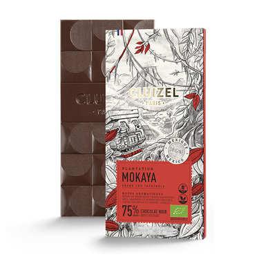 Tablette de chocolat de plantation - Mokaya noir 66% bio