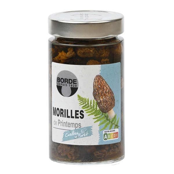Preserved Morels