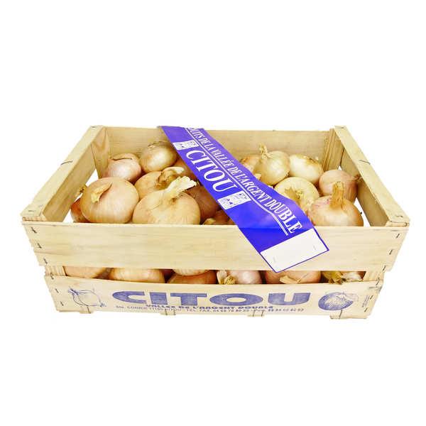 Oignons doux de Citou nouvelle récolte