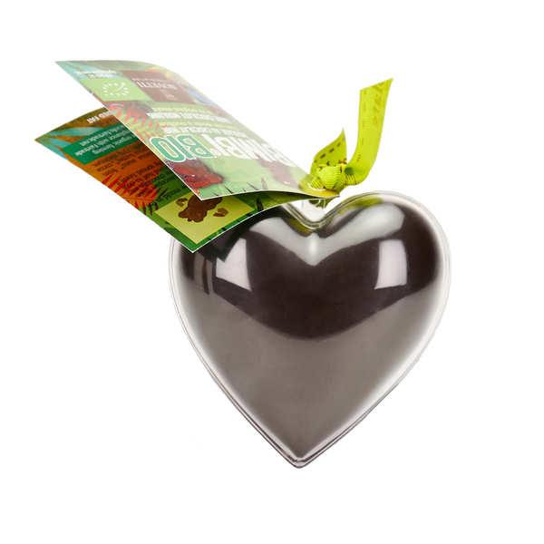 Bimbi Bio - Coeur en chocolat noir et son moule à réutiliser