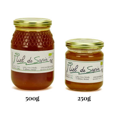 Organic Pine Tree Honey from Haute Loire