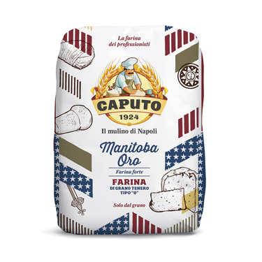Manitoba Oro Flour Caputo - Tipo