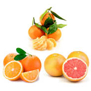 Organic citrus fruits discovery offer