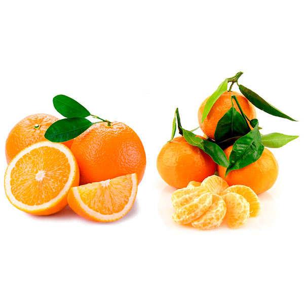 Lot découverte d'oranges et mandarines bio