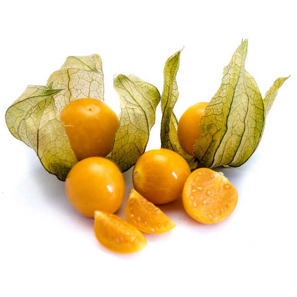 Organic Physalis from Colombia