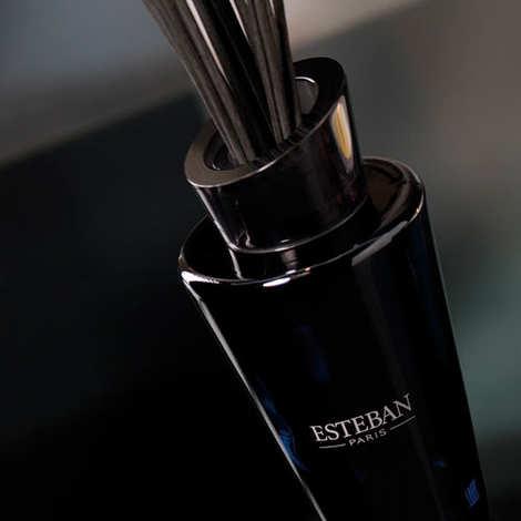 Esteban - Bouquet parfumé - Yuzu & sels roses