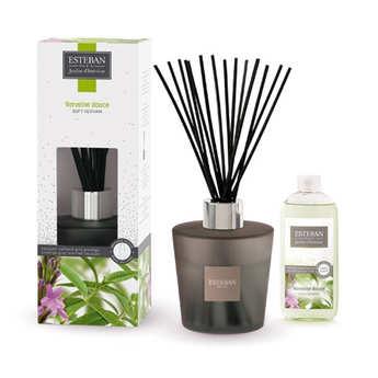 Esteban - Bouquet parfumé gris prestige - Verveine douce
