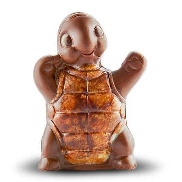 La tortue au chocolat au lait