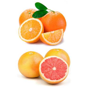 Lot découverte d'oranges et pomelos bio