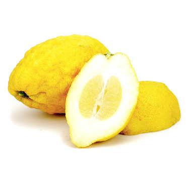 Organic Fresh Italian Citron