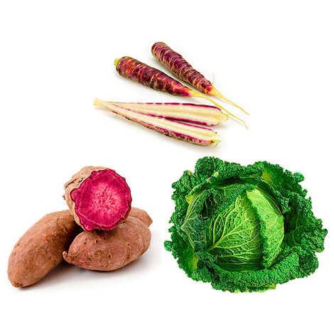 - Assortiment découverte de légumes frais bio