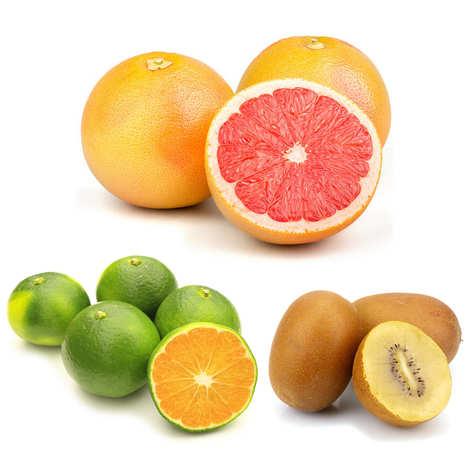 - Lot premium mandarines, kiwis et pomelos bio