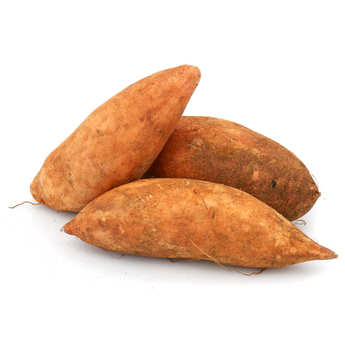- Organic Sweet Potato