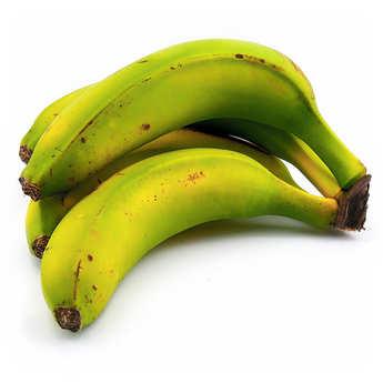 - Bananes des Canaries bio